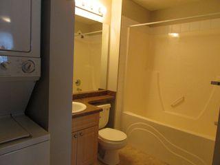 Photo 6: 240 Spruce Ridge Road in Edmonton: Condo for rent