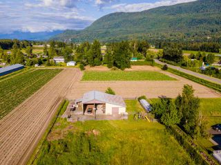 Photo 40: 41205 NO.4 Road in Abbotsford: Sumas Prairie House for sale : MLS®# R2467603