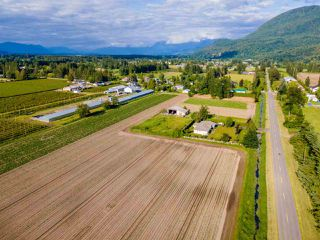 Photo 39: 41205 NO.4 Road in Abbotsford: Sumas Prairie House for sale : MLS®# R2467603