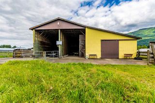 Photo 24: 41205 NO.4 Road in Abbotsford: Sumas Prairie House for sale : MLS®# R2467603