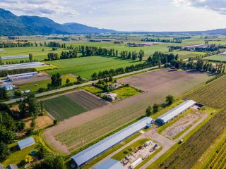Photo 35: 41205 NO.4 Road in Abbotsford: Sumas Prairie House for sale : MLS®# R2467603
