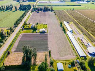 Photo 37: 41205 NO.4 Road in Abbotsford: Sumas Prairie House for sale : MLS®# R2467603