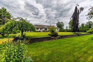 Photo 29: 41205 NO.4 Road in Abbotsford: Sumas Prairie House for sale : MLS®# R2467603