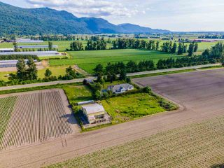 Photo 33: 41205 NO.4 Road in Abbotsford: Sumas Prairie House for sale : MLS®# R2467603