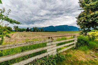 Photo 28: 41205 NO.4 Road in Abbotsford: Sumas Prairie House for sale : MLS®# R2467603