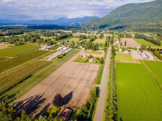 Photo 38: 41205 NO.4 Road in Abbotsford: Sumas Prairie House for sale : MLS®# R2467603