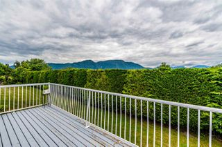 Photo 26: 41205 NO.4 Road in Abbotsford: Sumas Prairie House for sale : MLS®# R2467603