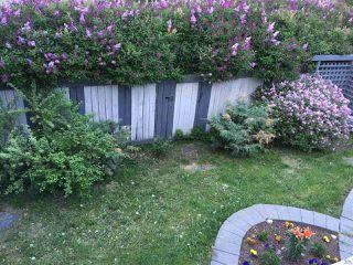 Photo 33: 5149 190A Street in Edmonton: Zone 20 House for sale : MLS®# E4209696
