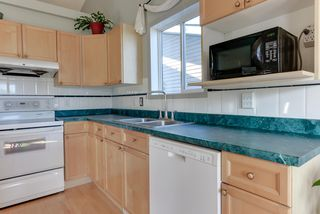 Photo 10: 5149 190A Street in Edmonton: Zone 20 House for sale : MLS®# E4209696