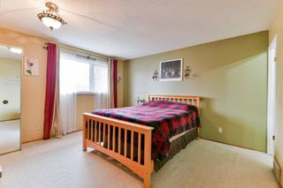 Photo 11: 245 Laurent Drive in Winnipeg: Richmond Lakes Residential for sale (1Q)  : MLS®# 202027326
