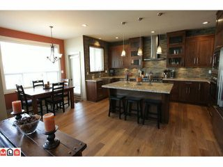 Photo 3: 7256 199TH Street in Langley: Willoughby Heights House for sale : MLS®# F1210865