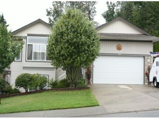 "Photo 1: 8053 TOPPER Drive in Mission: Mission BC House for sale in ""College heights"" : MLS®# F1321815"