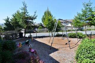 "Photo 21: 41 20350 68 Avenue in Langley: Willoughby Heights Townhouse for sale in ""SUNRIDGE"" : MLS®# F1420781"