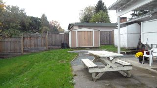 Photo 19: 33786 MAYFAIR AVENUE in Abbotsford: Central Abbotsford House for sale : MLS®# R2007138