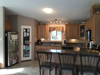Photo 6: 4911 51 Street: Jarvie Manufactured Home for sale : MLS®# E4177213
