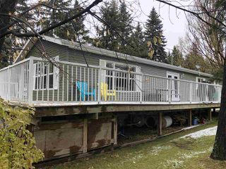Photo 28: 4911 51 Street: Jarvie Manufactured Home for sale : MLS®# E4177213
