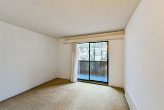 Photo 13: 314 365 GINGER Drive in New Westminster: Fraserview NW Condo for sale : MLS®# R2435014