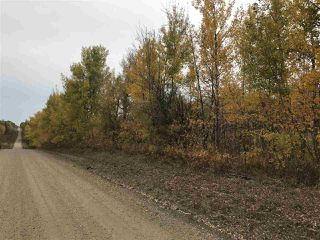 Photo 3: Range Road 64 Township Rd 574: Rural Lac Ste. Anne County Rural Land/Vacant Lot for sale : MLS®# E4211313