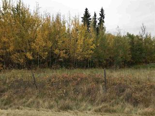 Photo 2: Range Road 64 Township Rd 574: Rural Lac Ste. Anne County Rural Land/Vacant Lot for sale : MLS®# E4211313