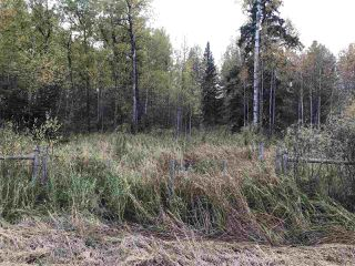 Photo 4: Range Road 64 Township Rd 574: Rural Lac Ste. Anne County Rural Land/Vacant Lot for sale : MLS®# E4211313
