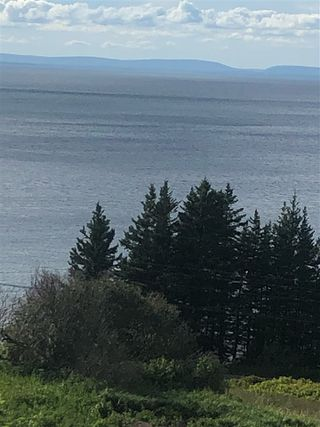 Photo 4: 81 Lakeshore Drive in Irish Cove: 207-C. B. County Vacant Land for sale (Cape Breton)  : MLS®# 202017903