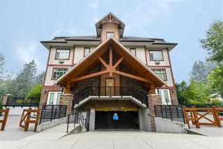 "Photo 35: 404 12565 190A Street in Pitt Meadows: Mid Meadows Condo for sale in ""Cedar Downs"" : MLS®# R2505666"