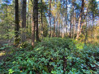 Photo 11: Lt 2 South Rd in : Isl Gabriola Island Land for sale (Islands)  : MLS®# 858957