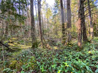 Photo 21: Lt 2 South Rd in : Isl Gabriola Island Land for sale (Islands)  : MLS®# 858957