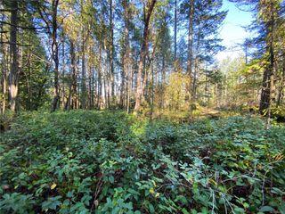 Photo 20: Lt 2 South Rd in : Isl Gabriola Island Land for sale (Islands)  : MLS®# 858957