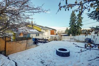 Photo 23: 11 Celtic Road NW in Calgary: Cambrian Heights Detached for sale : MLS®# A1050737