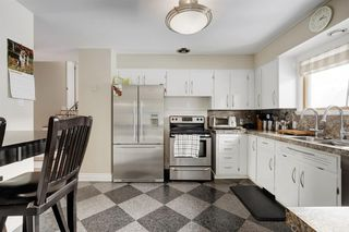 Photo 9: 11 Celtic Road NW in Calgary: Cambrian Heights Detached for sale : MLS®# A1050737