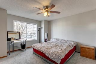 Photo 15: 55 Mt Apex Green SE in Calgary: McKenzie Lake Detached for sale : MLS®# A1052982