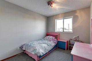 Photo 17: 55 Mt Apex Green SE in Calgary: McKenzie Lake Detached for sale : MLS®# A1052982