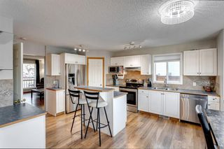 Photo 9: 55 Mt Apex Green SE in Calgary: McKenzie Lake Detached for sale : MLS®# A1052982