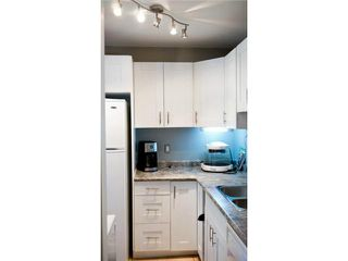 Photo 15: 11 Nolin Avenue in WINNIPEG: Fort Garry / Whyte Ridge / St Norbert Residential for sale (South Winnipeg)  : MLS®# 1215300
