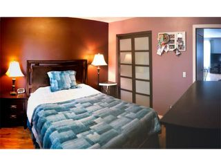 Photo 8: 11 Nolin Avenue in WINNIPEG: Fort Garry / Whyte Ridge / St Norbert Residential for sale (South Winnipeg)  : MLS®# 1215300