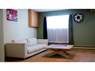 Photo 11: 11 Nolin Avenue in WINNIPEG: Fort Garry / Whyte Ridge / St Norbert Residential for sale (South Winnipeg)  : MLS®# 1215300