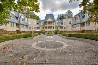Photo 1: 217 295 SCHOOLHOUSE STREET in Coquitlam: Maillardville Condo  : MLS®# R2331214