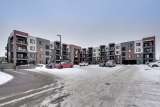 Photo 38: 320 1004 Rosenthal Boulevard: Edmonton Condo for sale : MLS®# E4141285