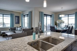 Photo 1: 320 1004 Rosenthal Boulevard: Edmonton Condo for sale : MLS®# E4141285