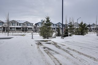 Photo 35: 320 1004 Rosenthal Boulevard: Edmonton Condo for sale : MLS®# E4141285