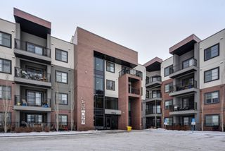 Photo 36: 320 1004 Rosenthal Boulevard: Edmonton Condo for sale : MLS®# E4141285
