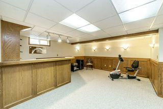 Photo 24: 38 Brunswick Crescent: St. Albert House for sale : MLS®# E4203904