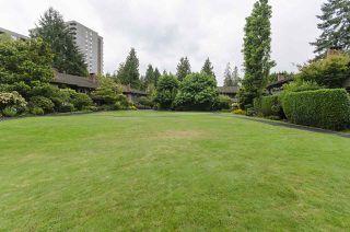Photo 6: 412 235 KEITH ROAD in West Vancouver: Cedardale Condo for sale : MLS®# R2117080