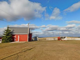 Photo 34: 23114 SH 643: Rural Sturgeon County House for sale : MLS®# E4178700