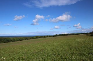 Photo 9: Lot Old Port Hood-Mabou Road in Port Hood: 306-Inverness County / Inverness & Area Vacant Land for sale (Highland Region)  : MLS®# 202017613