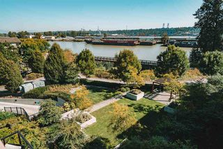 """Photo 35: 407 260 SALTER Street in New Westminster: Queensborough Condo for sale in """"Portage"""" : MLS®# R2497039"""