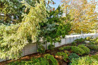 "Photo 29: 206 9310 KING GEORGE Highway in Surrey: Bear Creek Green Timbers Townhouse for sale in ""Huntsfield"" : MLS®# R2513071"