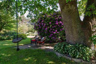 Photo 19: 4383 SELDON ROAD in Abbotsford: Matsqui House for sale : MLS®# R2272194