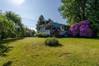 Photo 18: 4383 SELDON ROAD in Abbotsford: Matsqui House for sale : MLS®# R2272194